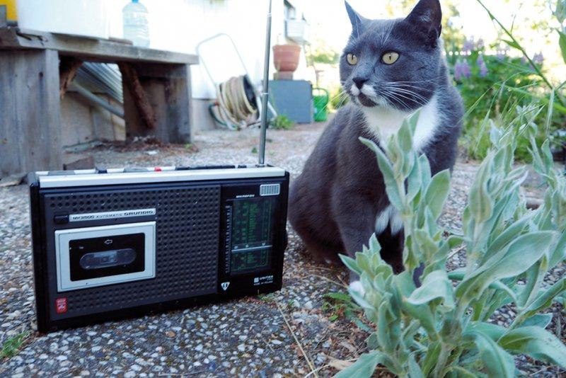 23augustin radio