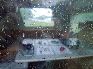 Letzter Blick durchs Fenster