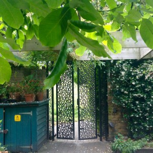 View Roots&Shoots: gate to the garden