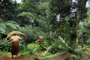 Gurukula gardeners. Foto: Gabi Schaffner